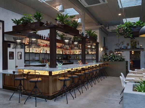 The Fern Bar
